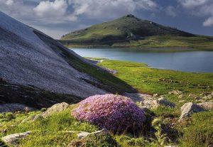 ییلاق-سیلوانا-سفر به ارومیه با سوئیت باما